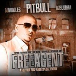 Pitbull Songs - kostenlos online hören!
